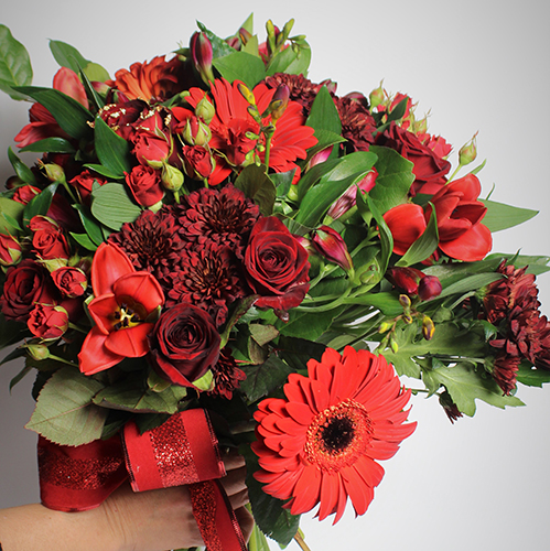 Red, Flowers,