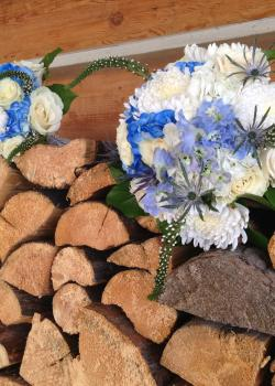 Blue and white flowers on a wood pile